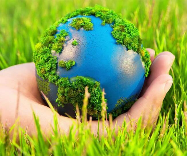 Bảo vệ môi trường là gì? Những cách bảo vệ môi trường đơn giản nhất
