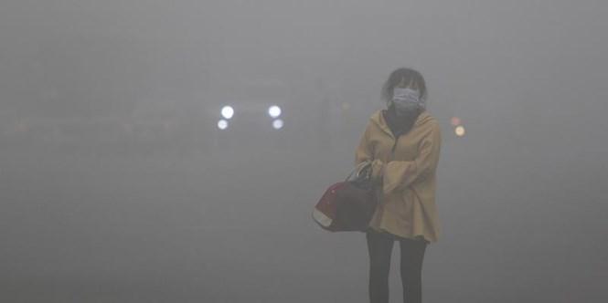 Sự tích cực của các quốc gia châu Á trong công tác bảo vệ môi trường